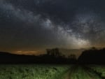 starry night over green fields