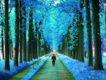'Walking in the blue Parks'