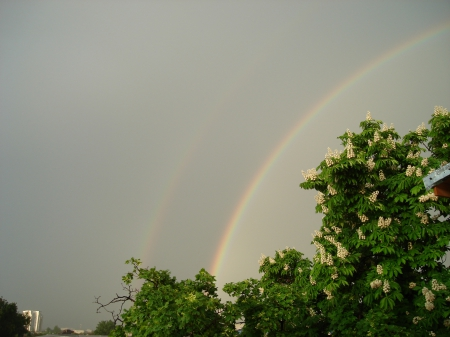 Rainbow - may, Romania, Bucharest, Rainbow