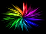 Rainbow of colors