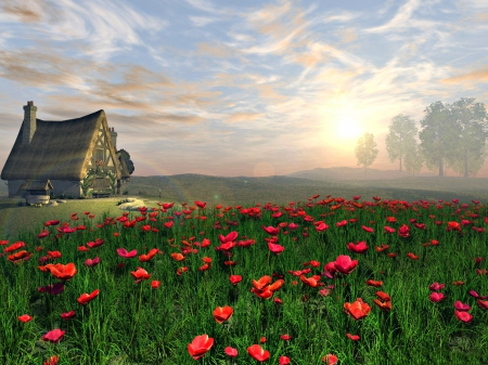 Cottage and Poppy Field