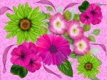 Big Pink And Green Flower Display