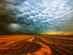 Thunderstorm Over The Field, Strohgaeu