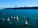Sailboats in Lisbon, Portugal