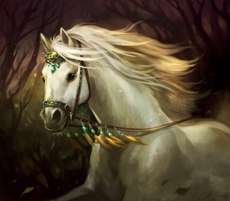 Beautiful White Horse Other Abstract Background Wallpapers On