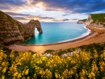 Durdle Door, Sea Arch, Dorset, England