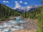 beautiful rapid flowing river landscape hdr