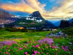 Spring At Glacier National Park