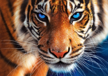 Blue eyes - art, wild, painting, beautiful, tiger, cat, eyes, blue