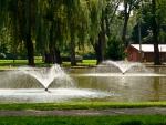 Little Pond Falls