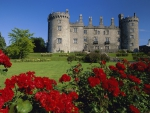 Castle and Rose garden in Ireland