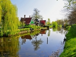 Netherlands Landscape