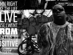 Biggie Smalls Negative to Positive