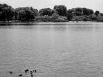 Meyers Lake