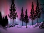 ~*~ Northern Lights ~*~