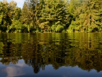 Scenic Summer Pond