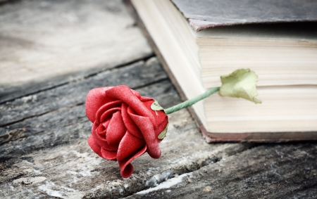 Life wrapped in a drama ♥ - red rose, life, book, drama, feelings