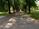 Scenic Avondale