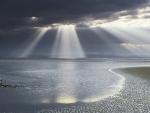 Sun rays in a beach