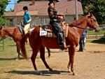 Horseback Honey