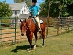 Horseback Cowgirl