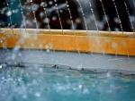 Summer Splashes