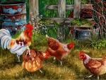Pecking Party
