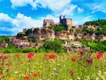 Chateau Dordogne-France