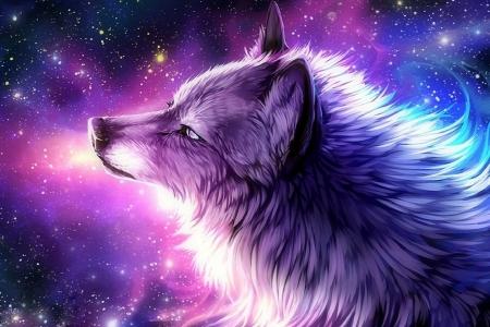The Galaxy Wolf