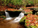 Fall Season Waterfalls