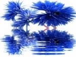 Blue Tistle