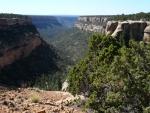 Mesa Verde Canyon 1
