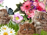 Flowers and Kittens