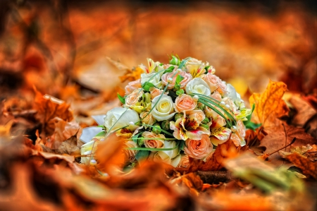 autumn bouquet flowers nature background wallpapers on