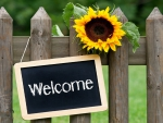 Welcome ♥