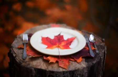 Welcome to the nature table - fall, autumn, leaves, dish, orange leaves, cutlery, seasons, wood