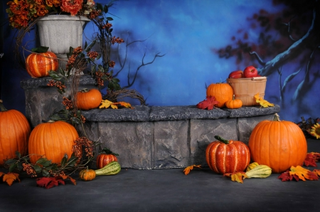 Autumn Display - Fall, apples, sunflower, trees, gourds, bushel basket, leaves, berries, basket, flowers, vines, flower pot, display, Autumn, pumpkins