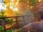 -PARK BRIDGE IN FALL-