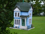 Rent to own bird house