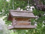 Bird bachelor house