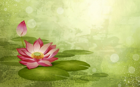 Lotus flower abstract 3d and cg abstract background wallpapers lotus flower abstract mightylinksfo