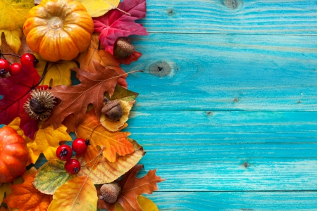 Autumn Leaves Other Nature Background Wallpapers On Desktop