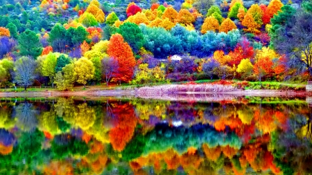 Beautiful autumn scenery - forest, colorful, shore, autumn, beautiful, trees, lake, foliage, tranquil, calm, serenity, river, scenery