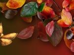 Color Bright Autumn