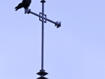 Christian Crow