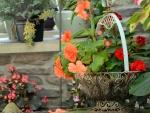 Scenic floral basket