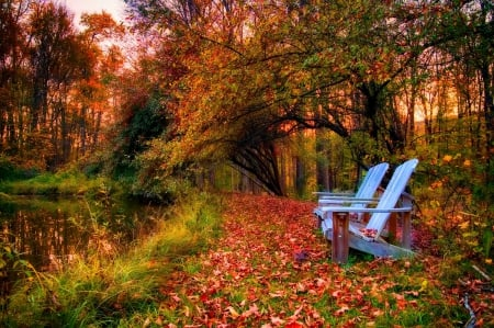 peaceful autumn �� forests amp nature background wallpapers