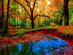 Small Stream in Autumn Forest