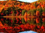 Beautiful Autumn Lake Reflection