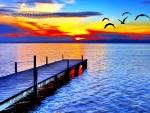 BIRDS FLIGHT in SUNSET